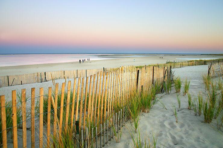 Cape Cod (Massachusetts)