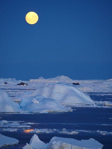 Pleine lune sur les icebergs
