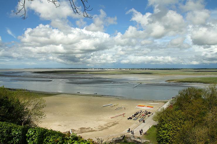 Baie de Somme, au plus près des oiseaux