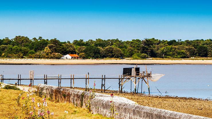 Charentes - La Flow Vélo, une nouvelle piste cyclable entre terre et mer