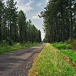 parc naturel aquitaine