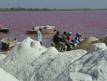 Le lac rose
