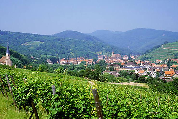 Les 60 ans de la route des vins d'Alsace
