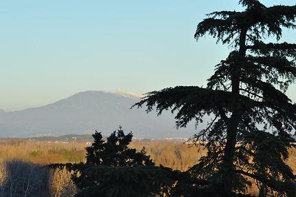 Mont Ventoux vu du Rocher des Doms