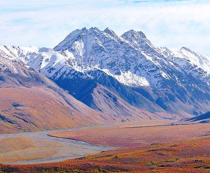 Denali National Park, aux États-Unis