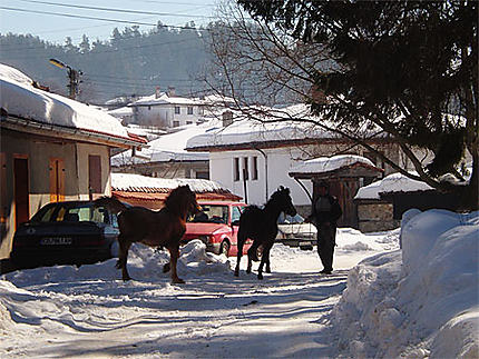 Koprivchtitsa sous la neige
