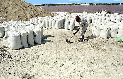Production sel du lac rose