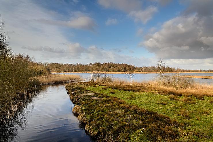 Balade dans le parc national Weerribben-Wieden