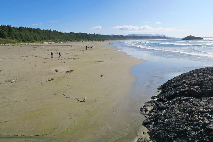 Pacific Rim National Park et West Coast Trail, des plages de rêve