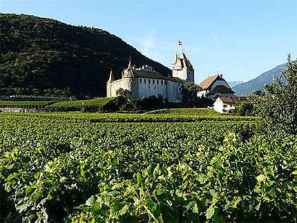 Château d'Aigle au milieu des vignes