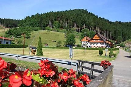 La Forêt Noire, que des beaux paysages !