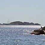 Ile de la Jarre et île du Jarron