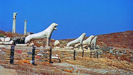 La terrasse des lions, Délos