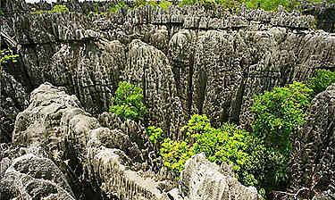 Parc national des Tsingy de Bemaraha