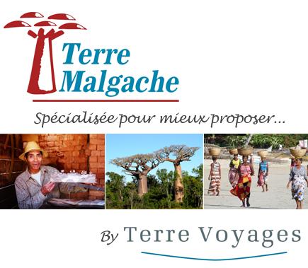 Terre Malgache