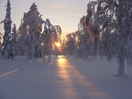 Le désert blanc à Ivalo, Laponie