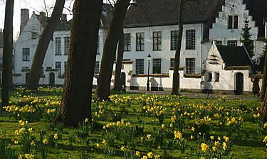 Prinselijk Begijnhof ten Wijngaarde (Béguinage princier de la Vigne)