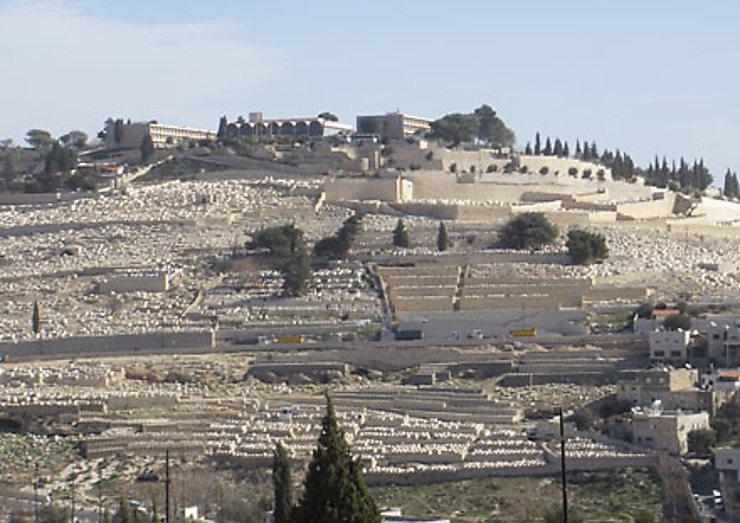 Israël et les Territoires palestiniens : terre sainte, terre extrême