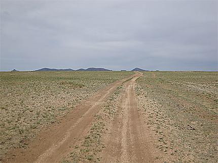 Route dans le Khustain Nuruu
