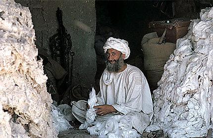 Herat en Afghanistan