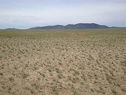 Paysage du Khustain Nuruu