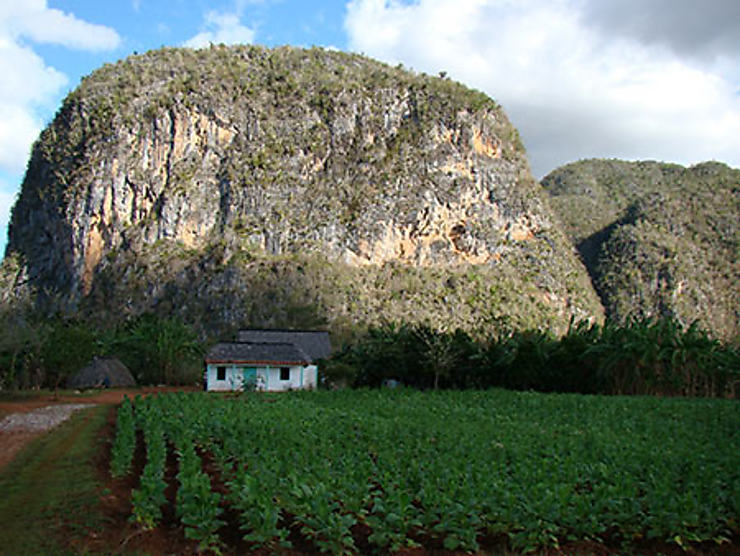 Viñales : grottes et rocs, randonneurs et spéléologues