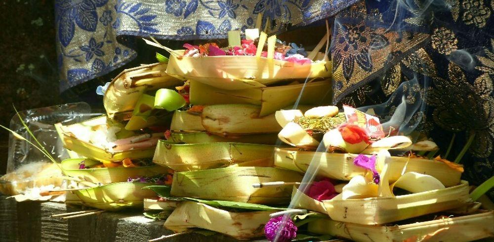 Retour de 3 mois à Ubud à Bali. Tous nos bons plans