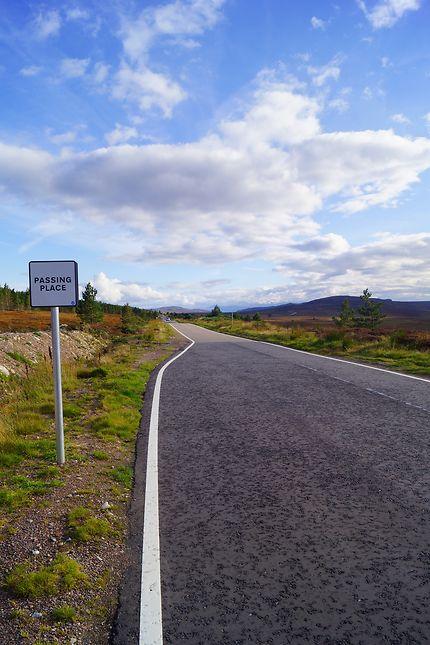 Courtoisie obligatoire sur la route des Highlands