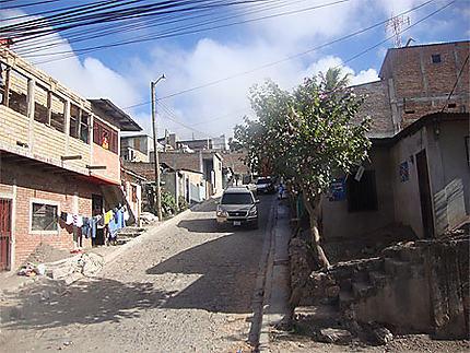 Colonia Torocagua