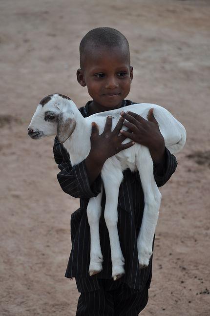 Précieuse chèvre pour ce jeune Peulh