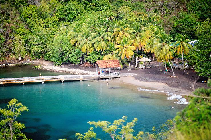 Anse Dufour et Anse Noire, Martinique