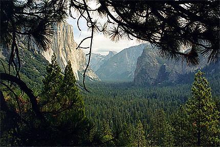 Jurassic park à Yosemite