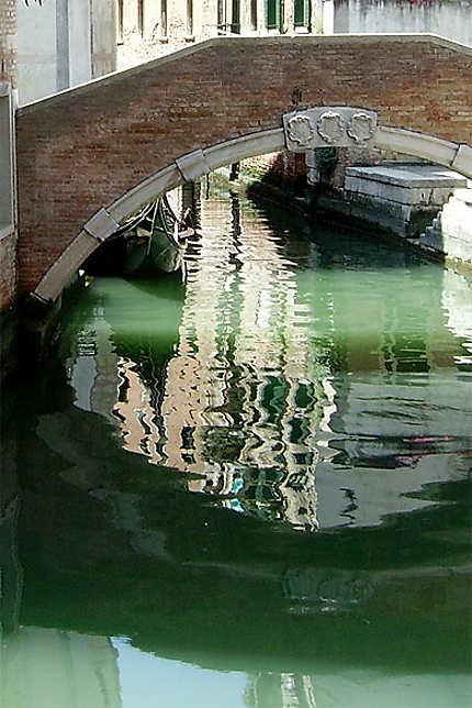Reflets dans l'eau verte