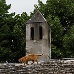 Sur les toits de Mostar