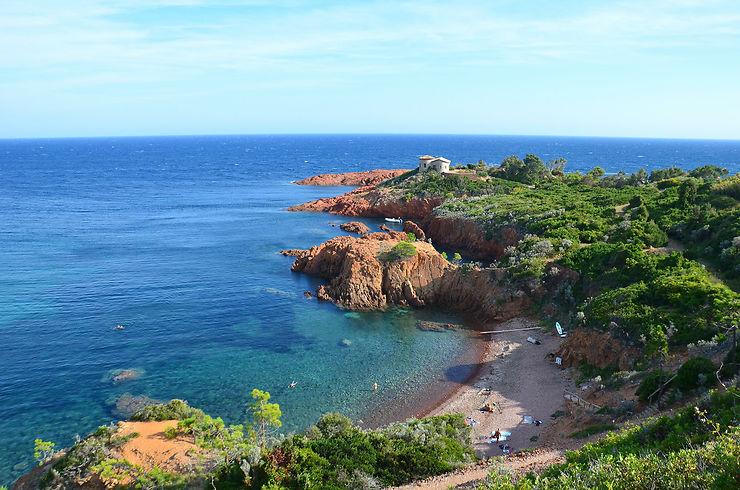 Plongée dans les eaux claires du Cap Roux