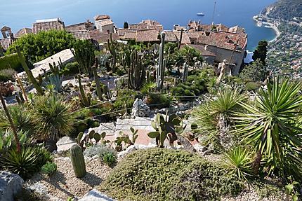 Panorama depuis le jardin exotique : Plantes : Èze : Alpes-Maritimes ...