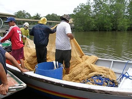 Pêcheurs de crevettes