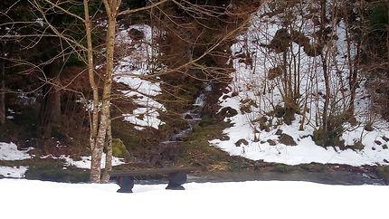La cascade des Nans, figée dans le Jura