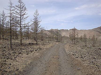 Route au volcan Khorgo Uul