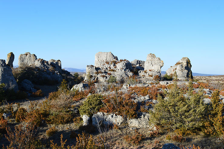 Plateau du Larzac, des grands espaces à l'Unesco