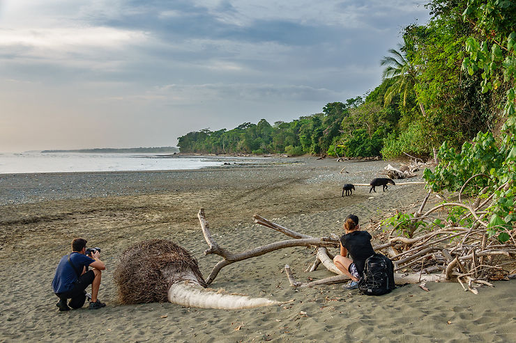Parc national Corcovado (Costa Rica)