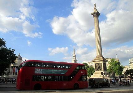 Les fameux bus