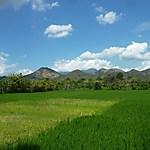 Sur la route Sumbawa Besar-Empang