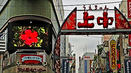 Heno, Tokyo