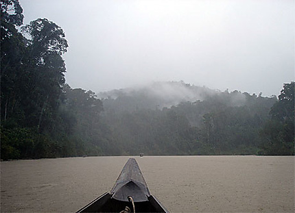Teman Negara.Malaisie. Trek
