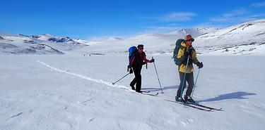 Le Jotunheimen (Norvège) à ski nordique