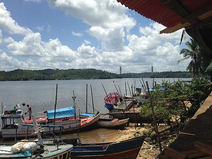 Les pirogues sur le fleuve Oyapock, Guyane