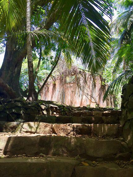 Le bagne de l'île Saint-Joseph