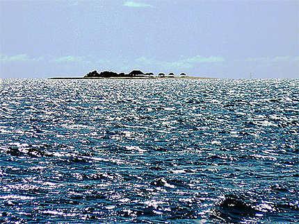 Iles Fidji - Île