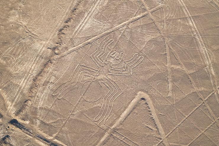 Pérou - Un chat géant découvert parmi les lignes de Nazca